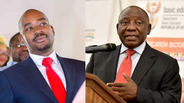 MDC calls for help from South Africa following attack on Nelson Chamisa's convoy