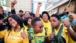 'Thorn in the side': ANC members threaten elections boycott over candidate selection