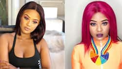 Raw and unfiltered: Babes Wodumo leaves Mzansi howling in viral video