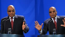 """""""This sentence isn't right"""": Zuma denies that he's done anything wrong"""