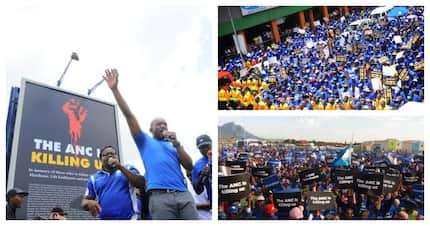 'ANC is killing us' declares the DA with the unveiling of billboard in Joburg