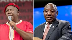 EFF's Julius Malema says President Cyril Ramaphosa is compromised by the Ruperts