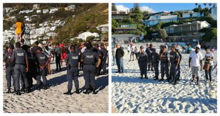 Cape Town to lay charges against protestors who slaughtered sheep on Clifton Beach