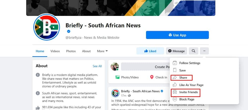 New Facebook algorithm: How to see Briefly news on your News Feed now