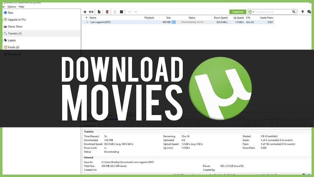 Easy Steps On How to Download a Movie Using uTorrent App ▷ Briefly SA