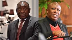 """""""I don't participate in rubbish"""": Malema ditches Ramaphosa meeting, accuses Ramaphosa of aligning with DA"""