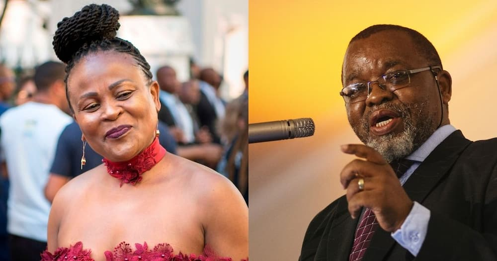 Mkhwebane vs Mantashe: SA responds to inquiry into Public Protector