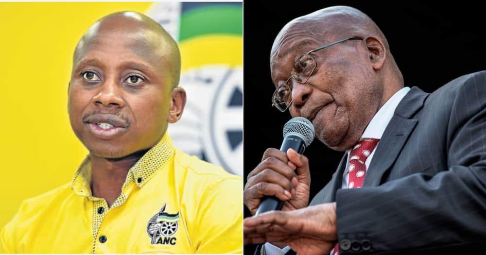 Jacob Zuma, Andile Lungisa, Nationwide shutdown, African National Congress, ANC, Nelson Mandela Bay, Constitutional Court