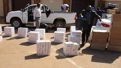 Police discover R700 000 in illegal cigarettes in Limpopo warehouse