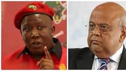 Gordhan denies SAA R10bn in funding, gets dragged by the EFF