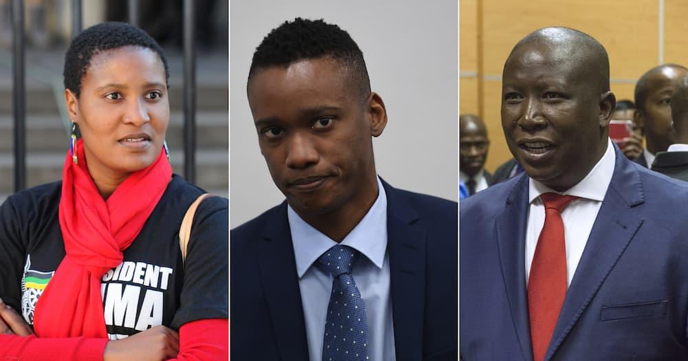 DA, EFF, Duduzile Zuma-Sambudla, Duduzane Zuma, Julius Malema, John Steenhuisen, Jacob Zuma, protests