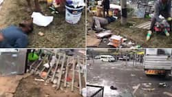 Yoh: Video of looters taking a nap after drinking stolen booze has SA stunned