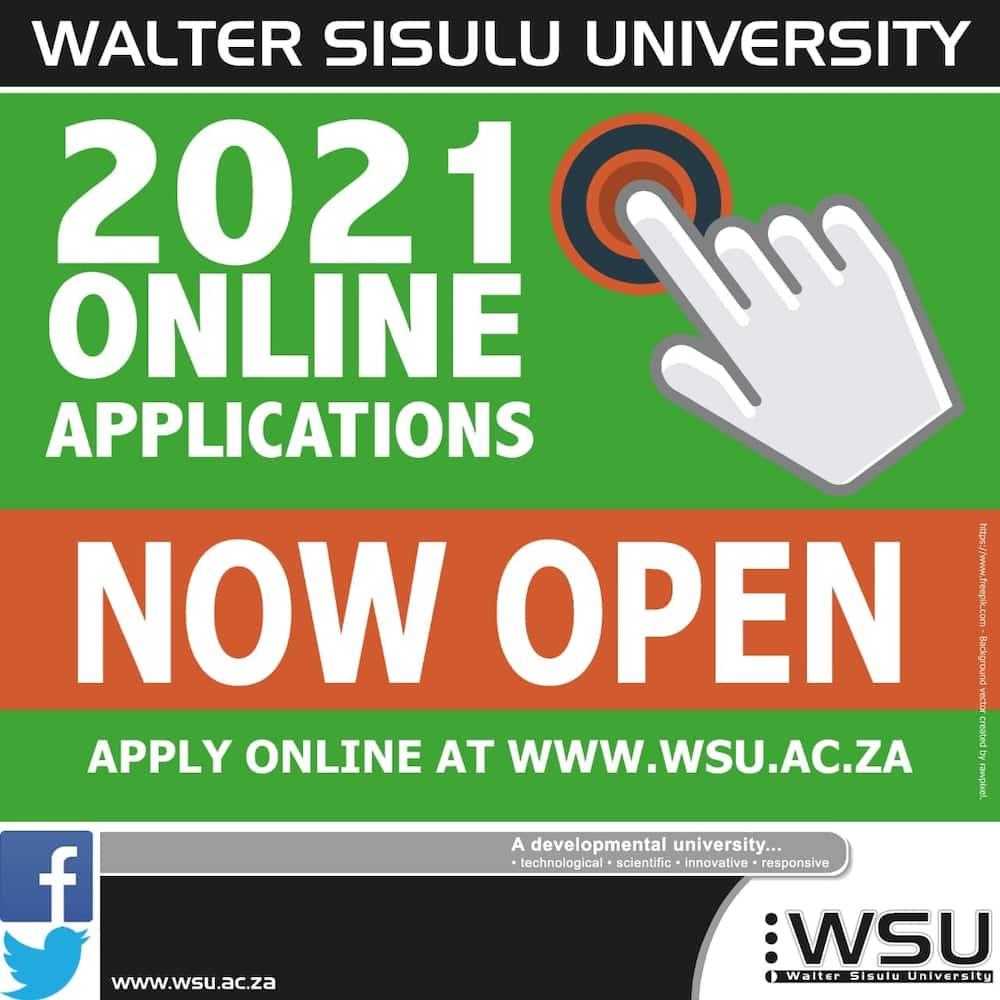 wsu online application 2021