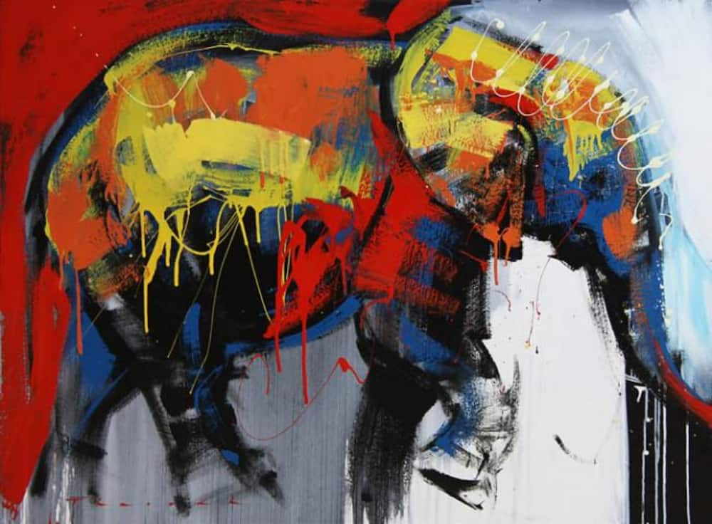Art galleries in South Africa. The South African Art museum.
