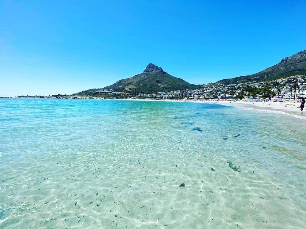 beaches in South Africa Durban