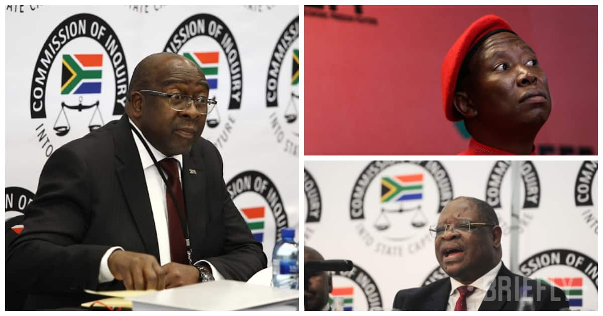 EFF get in on state capture action with scathing reaction to Nene's testimony