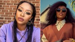 """DJ Zinhle's reality TV show crushed by Showmax: """"At this stage, there are no plans for a reality show"""""""