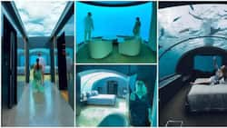 Video of underwater hotel room that costs R1m to sleep in per night goes viral, social media users express surprise