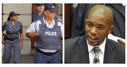 "Maimane: You need to be ""politically connected"" to get help from police"