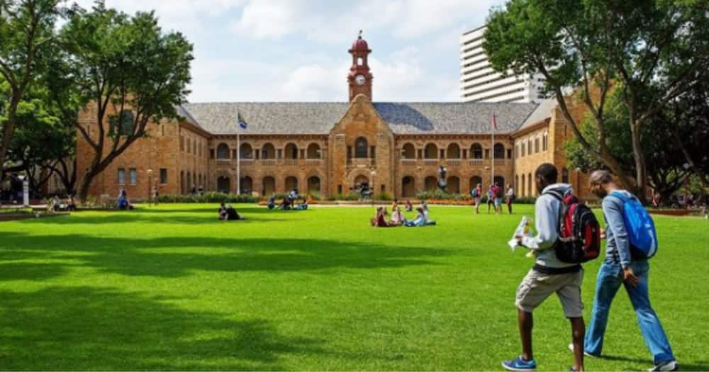 The University of Pretoria Uncovers Fake Rembrandt Van Rijn Painting