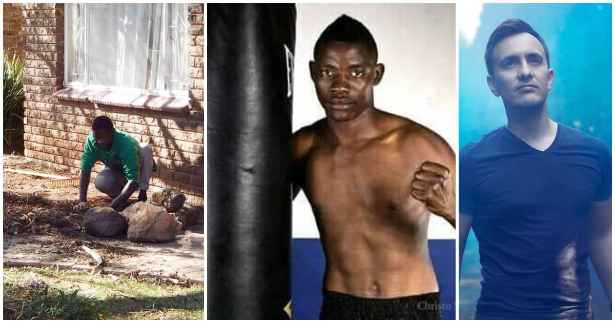 Gardener becomes unbeaten boxing legend after employer shows kindness