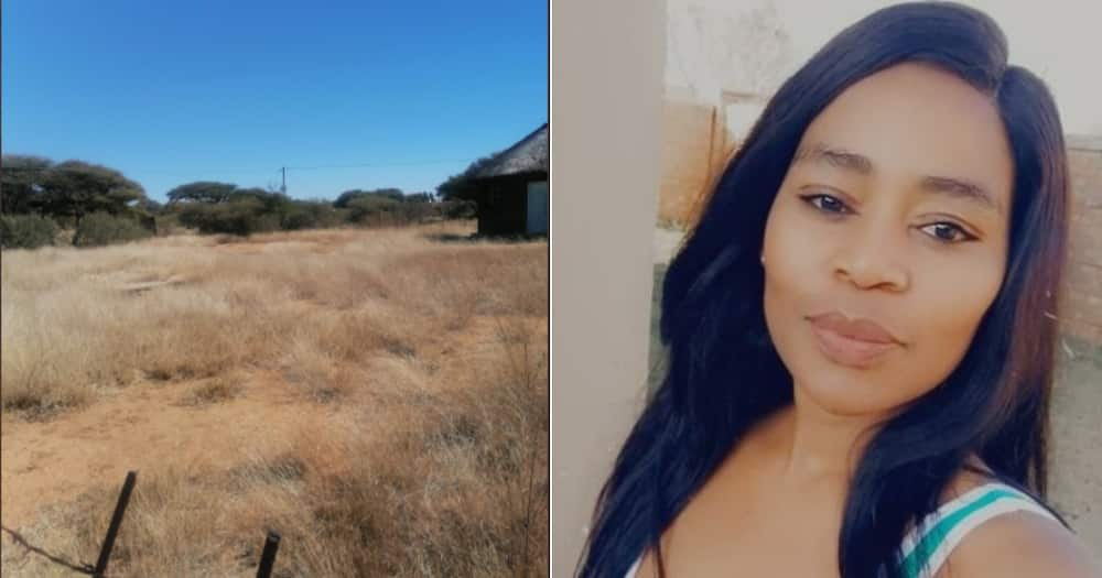 Land, South Africans, Celebrate, Woman, Her Plot, Social media, Twitter