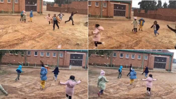 Aww: Sweet video shows SA kids playing in the snow, Mzansi thinks it's adorable