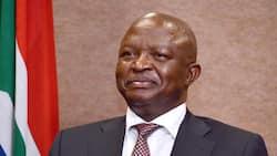 David Mabuza shares his Christmas message: Don't despair Mzansi