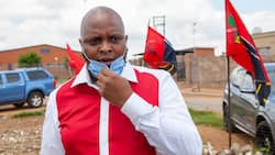 Floyd Shivambu asks Orlando Pirates to distance themselves from crazed fan online