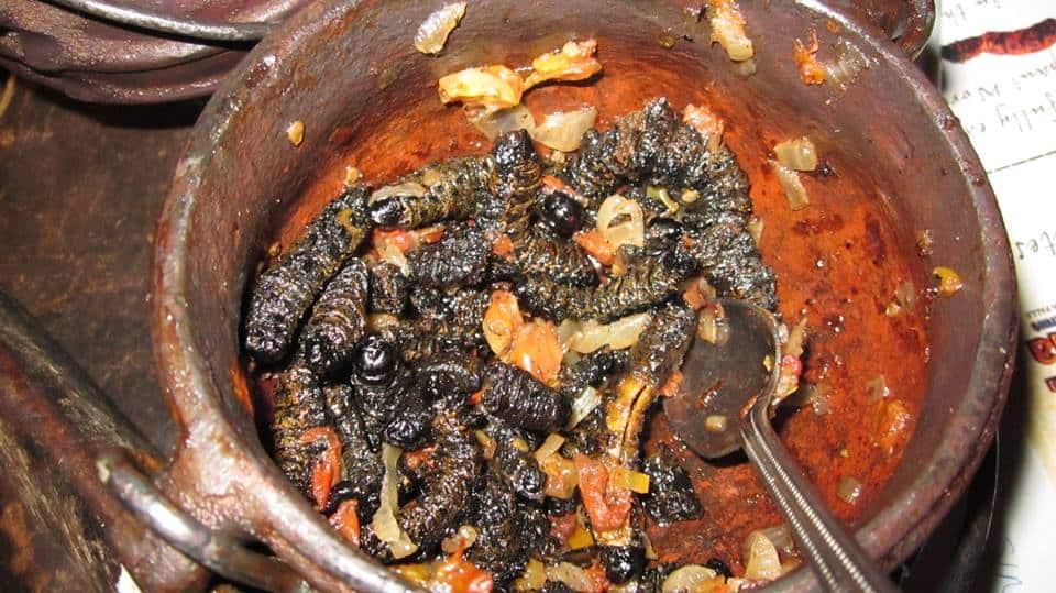 tsonga food