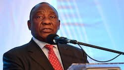 ANC manifesto: Ramaphosa says the ruling party will shift focus to employment in next 5 years