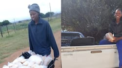 Woman power: Lady starts fat cake business out of a wheelbarrow, now employs 2 people