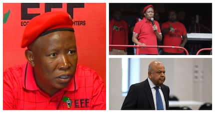 Malema won't back down, confronts Gordhan and white monopoly capital