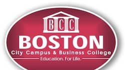 Boston College courses and fees 2021: Get the full list