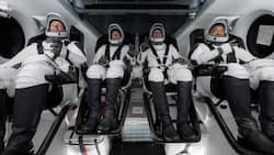 Great news as Elon Musk's SpaceX launches 4 astronauts to ISS from Florida