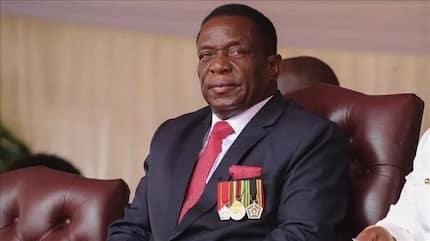 Zimbabwe's ruling party ZANU-PF claims majority seats in parliamentary polls